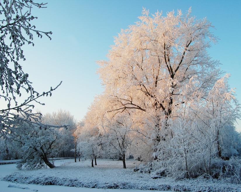 Photo by Dick Muddle - sneeuw.jpg